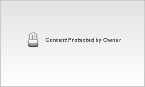 Sparrow on Beach
